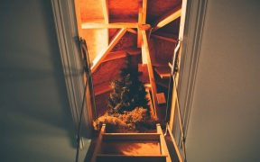 looking up into a loft conversion