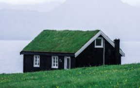 eco house with grass roof